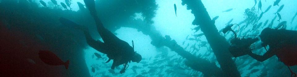 Dive & Dream – der Blog