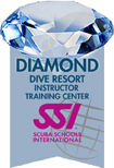 ssi_diamond_logo