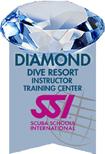 ssi diamond logo