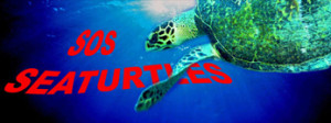sos_seaturtles