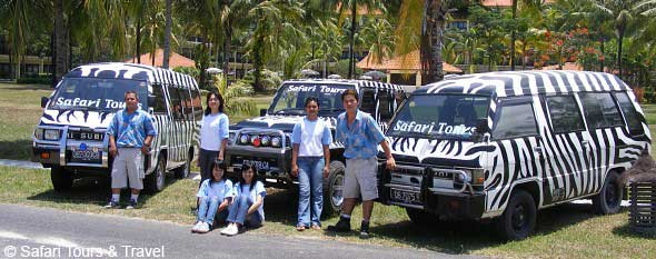 Team Safari Tours & Travel