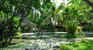 Pondok Sari Beach Resort & Spa - Pemuteran